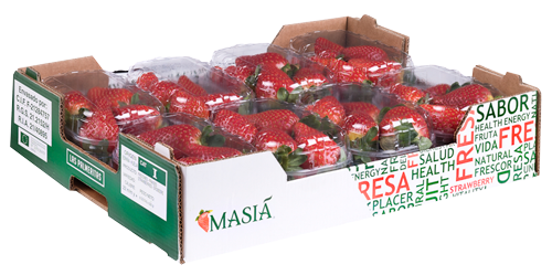 Canarian strawberry - Masiá Ciscar