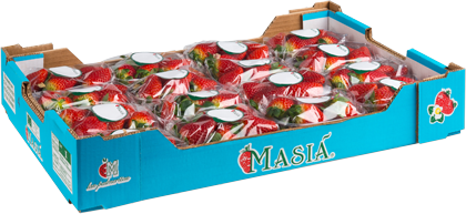 Strawberries - Masiá Ciscar