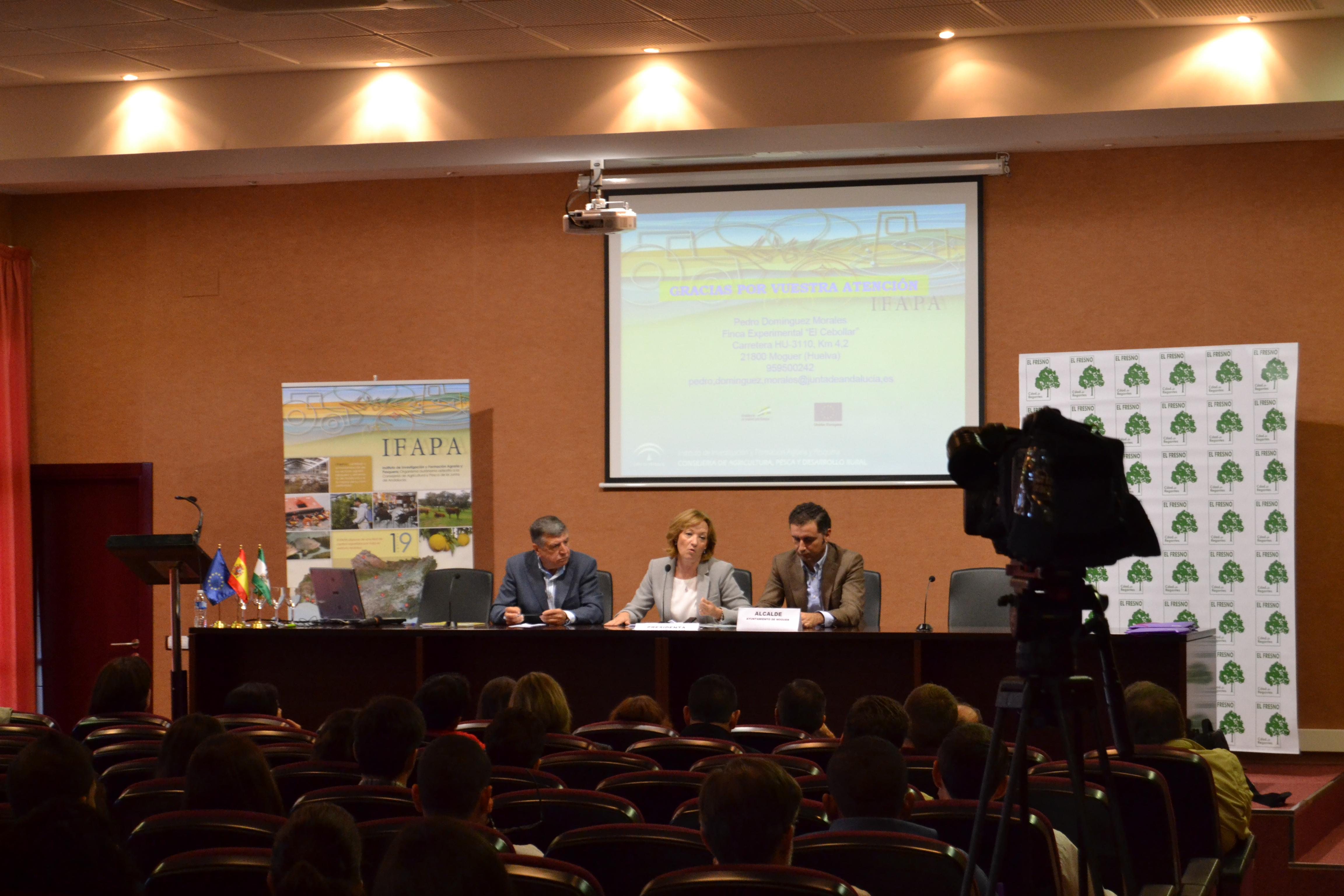 Carmen Ortiz destaca la importancia de la experimentación en el cultivo de la fresa - Masiá Ciscar