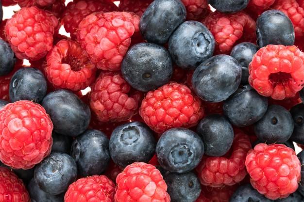 Todo lo que necesitas saber sobre la exportación de berries a Europa - Masiá Ciscar