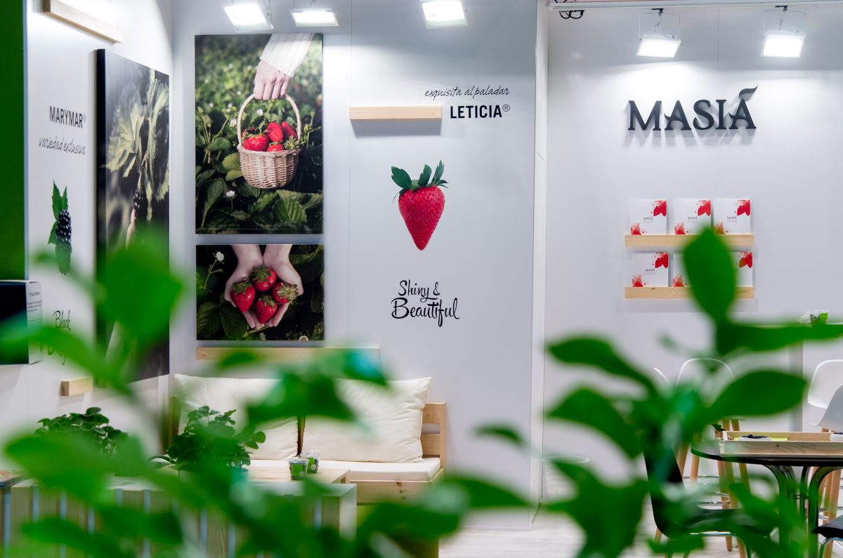 Nuevo año de éxitos en Fruit Attraction 2019 - Masiá Ciscar