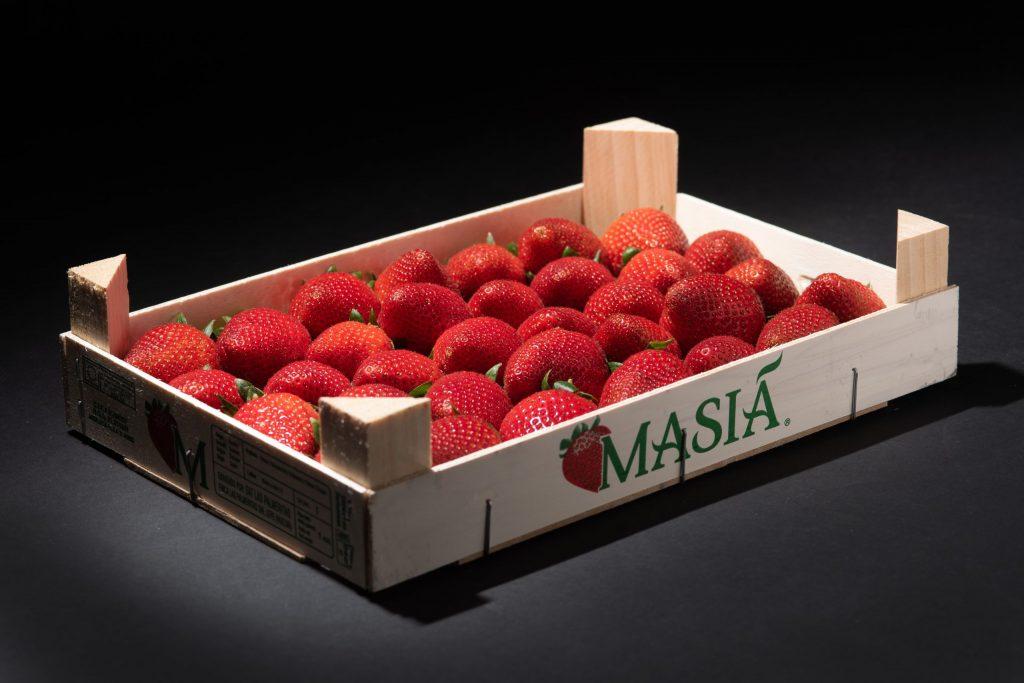 ¿Qué tener en cuenta para elegir productores de berries de calidad? - Masiá Ciscar